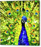 Peacock Abstract Realism Canvas Print