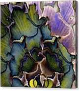 Peacock Dream 4 Canvas Print