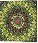 Peacock Feathers Kaleidoscope 7 Canvas Print