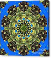 Peacock Feathers Kaleidoscope 9 Canvas Print