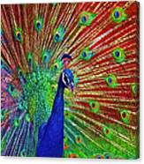 Peacock In Front Of Red Barn Canvas Print