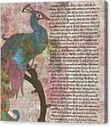 Peacock Pointing To Desiderata Canvas Print