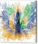 Peacock Splash Canvas Print