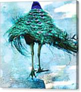 Peacock Walking Away Canvas Print