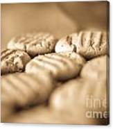 Peanut Butter Delights Canvas Print