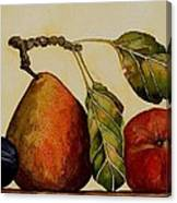 Pear Plum Apple Canvas Print