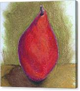 Pear Study 3 Canvas Print