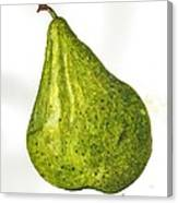 Pear Study#3 Canvas Print