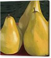 Pear Trio 1  Canvas Print