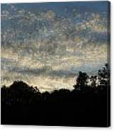 Pearls In The Sky Canvas Print