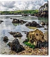 Pebble Bay Canvas Print