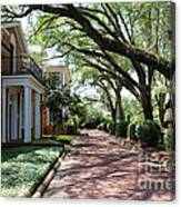 Pebble Hill Plantation Walkway Canvas Print