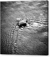 Pebble In The Water Monochrome Canvas Print