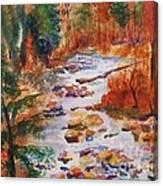 Pebbled Creek Canvas Print
