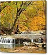 Pedelo Falls Canvas Print