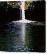 Pedernales Twin Falls-vpan Canvas Print