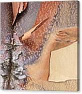 Peeling Bark - Horizontal Canvas Print