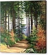 Peisaj Canvas Print