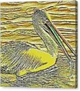 Pelican 1 Canvas Print