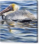 Pelican At Cedar Point Canvas Print