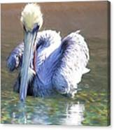 Pelican Blue Canvas Print