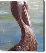 Pelican Brief Canvas Print