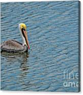 Pelican Drifting On Rippled Water Canvas Print