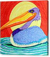 Pelican In The Sun  Canvas Print