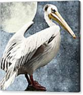 Pelican Night Canvas Print