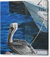 Pelican On A Boat Canvas Print