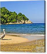 Pelican On Beach Canvas Print