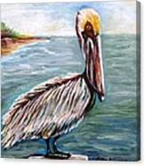 Pelican Pointe Canvas Print