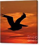 Pelican Profile Canvas Print
