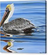 Pelican Ripples Canvas Print