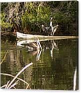 Pelican Temper Canvas Print