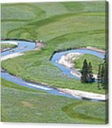 Pelican Valley Swirls Canvas Print
