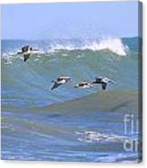Pelicans Flying Between Waves 3788 Canvas Print