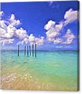 Pelicans Of Aruba Canvas Print