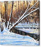Peme Bon Won River Fly By Canvas Print