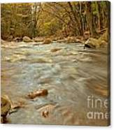Pemigewasset River Rushing By Canvas Print