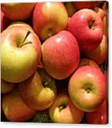 Pennsylvania Apples Canvas Print