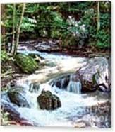 Pennsylvania Creek Canvas Print