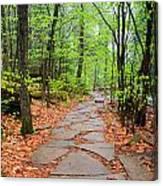 Pennsylvania Hiking Trail Canvas Print