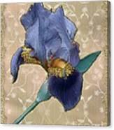 Penny Postcard Florentine Canvas Print