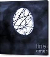 Pentacle Moon Canvas Print