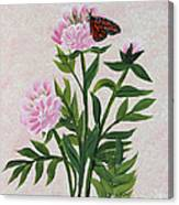 Peonies And Monarch Butterfly Canvas Print