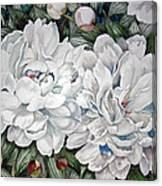 Peonies Love Ants Canvas Print