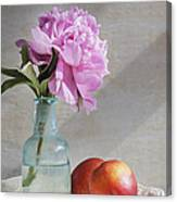 Peony Blue Bottle And Nectarine Canvas Print