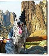Pepper At Smith Rock Canvas Print