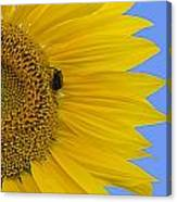 Perfect Half With Blue Sky Canvas Print